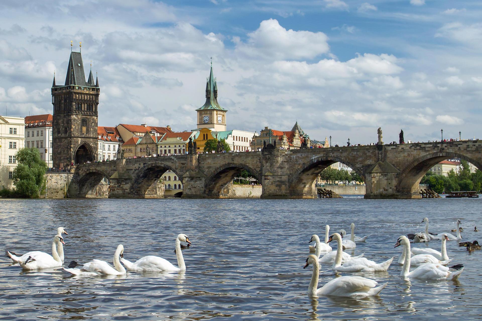 мосты чехии в картинках брак робин распался